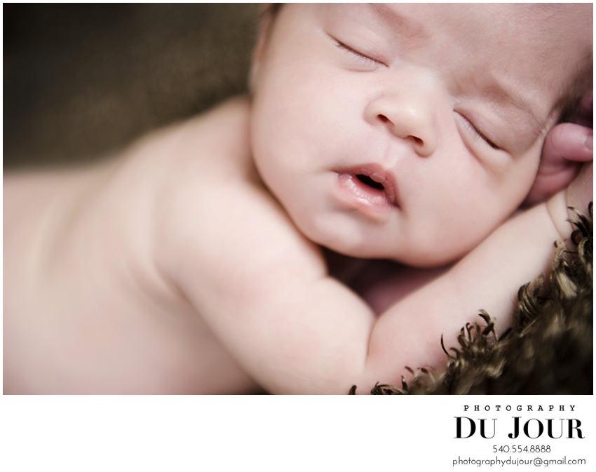 Fresh out of the oven: Vienna Newborn Photographer