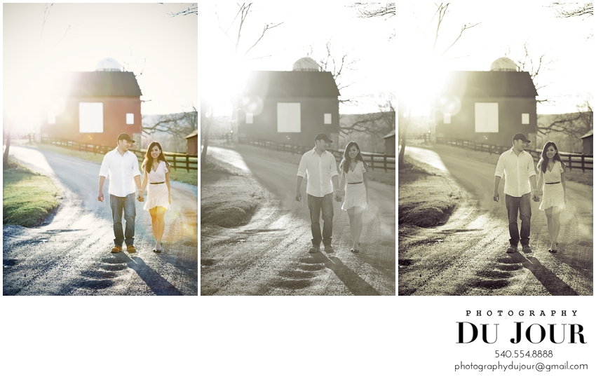 T+A Save the Date: D.C. Engagement Photographer, Northern Virginia Wedding Photographer